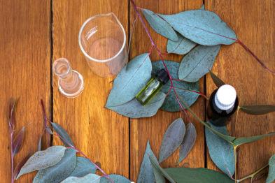 Eucaforest Eucalyptus Oils Producers and Exporters